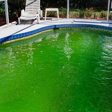 Cómo limpiar una piscina verde sin vaciar